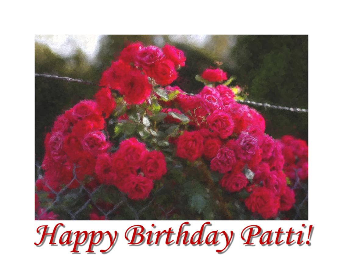 Happy Birthday Wishes To Patti Potts Castator Sunday November